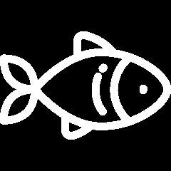Dieren icoon